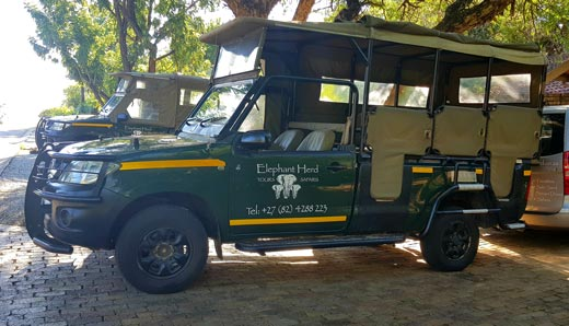 Elephant Herd Safaris and Tours Open Vehicle
