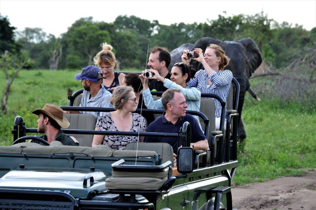 Kruger Park safaris